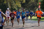 2015 Griffith Parth Trail Marathon Relay